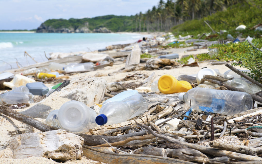 Waging War on Plastic: What are Brands Doing to Cut down Plastic Pollution?